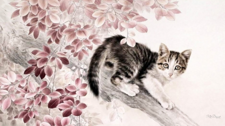 Chinese Cat Painting II