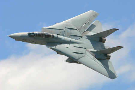 The F14 Tomcat - Military & Aircraft Background Wallpapers on