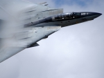 The F14 Tomcat