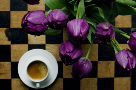 purple tulips & cup of coffee - still life, cup, flowers, coffee, purple tulips