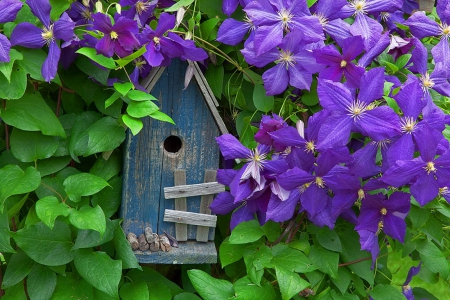 Blue bird house - pretty, house, lovely, fresh, blue bird, beautiful, trees, freshness, leaves, nice, summer, blossoms, nature, blooming, blue