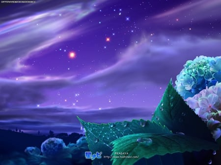 Purplish-Blue Sky - Stars, Sky, Plants, Lovely, Beautiful, Leaves, Green, Clouds, Flowers, Night
