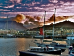 beautiful harbor in capetown south africa