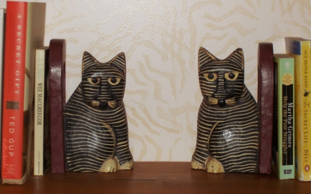 An Intellectual Pair of Cats - bookshelf, stripes, kitty cats, books, striped, bookends, cats, fe1ine