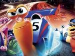 Turbo 2013 Cartoons
