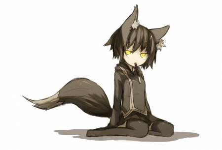 Anime Wolf Boy Other Anime Background Wallpapers On Desktop Nexus Image 1517728