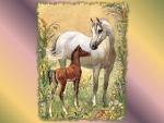 Arabian Mare and Foal 2