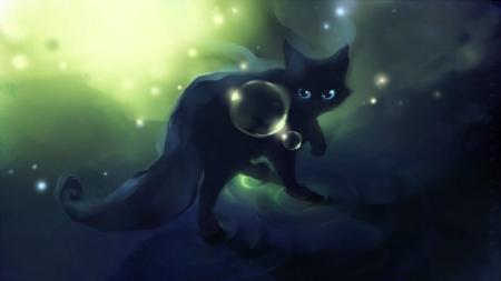Black Curious Cat