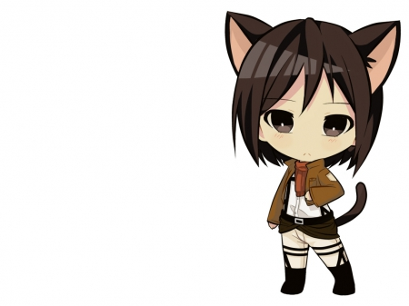 Mikasa Ackerman Other Anime Background Wallpapers On