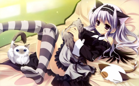 Cute Emo Cat Girl Other Anime Background Wallpapers On Desktop