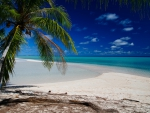 Fakarava Island - beach and lagoon - Tuamotu Atoll French Polynesia