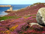 Cromwells Castle Tresco Isles of Scilly Cornwall England Britain United Kingdom - paradise island