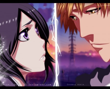 Goodbye Rukia - bleach, goodbye, anime, ichigo, rukia, couple
