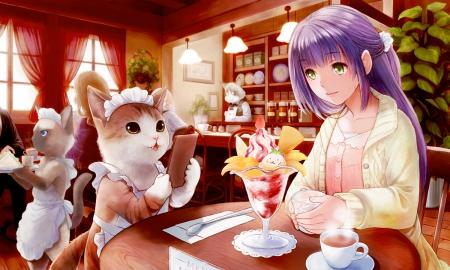 Kitten Coffee Cafe