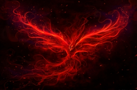 the red phoenix fantasy abstract background wallpapers on