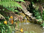 Beautiful serene waterfall and orange lilies in tranquil English Garden UK