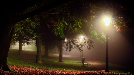Melancholia - gardens, lights, landscapes, white, parks, grass, leaves, bench, green, red, Nocturnal, trees