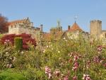 Magnolias and Medieval Castle - United Kingdom