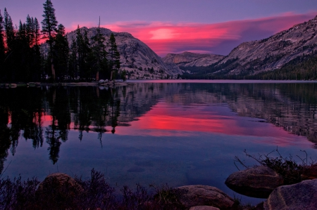 Tenaya Lake, California