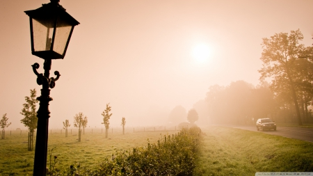 Fog over the meadow - HD, nature, fields, fog