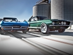 1967 Shelby GT500 Vs. 1967 Corvette Stingray 427