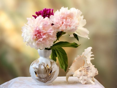 Land and sea - flowers, vase, white, sea shell, pink, peonies