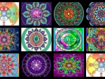 Collage of mandalas