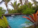 Tropical Jungle Spa Hot Tub in vegetation overlooking Hawaiian Beach on Big Island