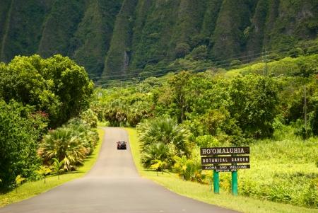 Charmant Hoomaluhia Botanical Gardens Oahu Hawaii