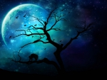 Blue Moon Darkness