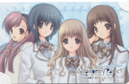 St. Spica's Academy - lovely, friend, sexy, sweet, hot, anime girl, team, nice, anime, pretty, group, female, girl, strawberry panic, cute