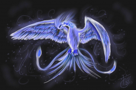 'Spirit of Ice' - fantasy arts, flying bird, phoenix, colors, softness beauty, attractions in dreams, digital art, winged, fantasy, paintings, cool, drawings, feathers