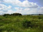 River foreland