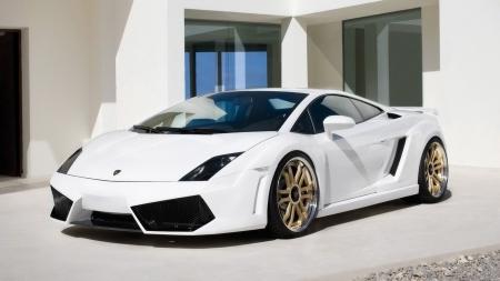 Cool White Lamborghini Lamborghini Cars Background Wallpapers On