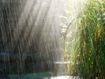raining with sunlight