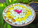 Bowl of Plumerias at a Spa