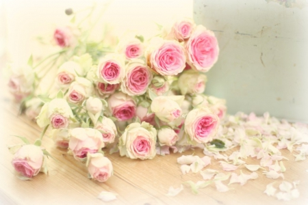 Soft pink rose flowers nature background wallpapers on desktop soft pink rose flowers soft rose pink mightylinksfo