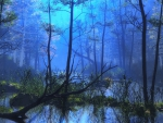 ..Blue Shine in the Forest..