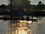 Barrie's dragon boat races  (yellow boat )