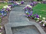 Flowery Walkway