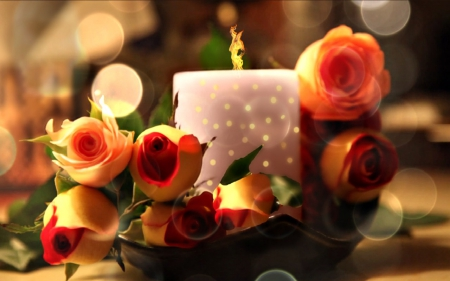 CANDLELIGHT & ROSES - Flowers & Nature Background Wallpapers on ...