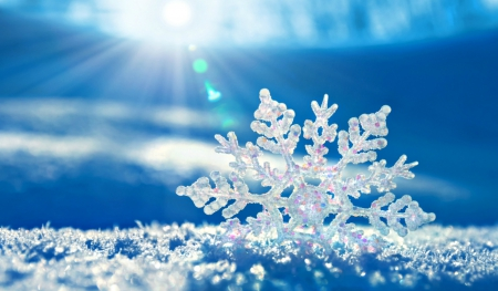Crystal Snow Flake - snowflake, photography, snow, bright, ice, crystal, light