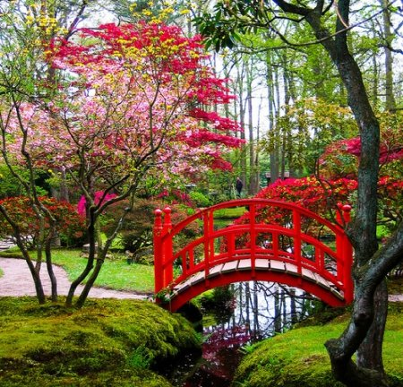 Japanese Garden   Other U0026 Nature Background Wallpapers On Desktop Nexus  (Image 1551599)