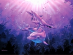 Dolphins in a pink light