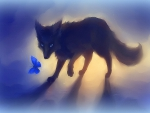 black fox with butterfly