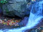 Rocks stream