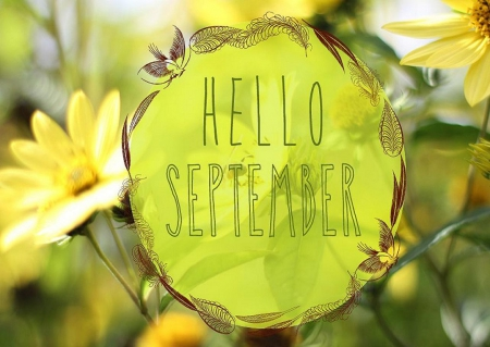 Comments On Hello September Flowers Wallpaper Id 1556284