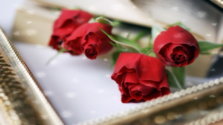 ♥Sealed with Love♥ - red roses, love letters, lovely, exquisite, hearts, love, romace, petals, innocences