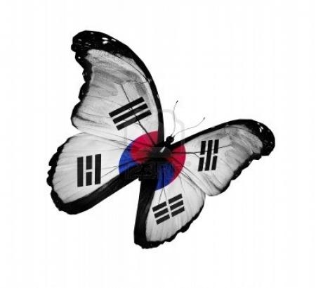 South Korea Flag Butterfly Flying High Butterflies Animals