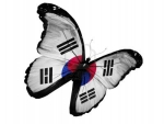 South Korea Flag Butterfly Flying High